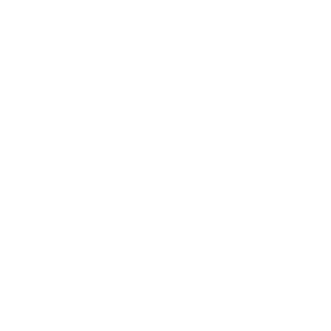 trip choice 2020 white bg transparent