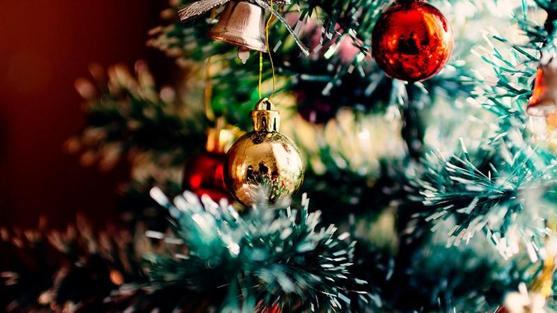Comemore o Natal com a família no Sítio Castelinho